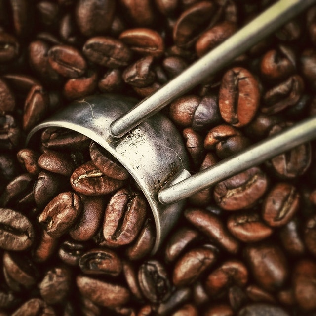 caffeine in coffee beans