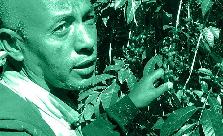 #125 Mokkamestarit: Ethiopia Addis Abeba Organic