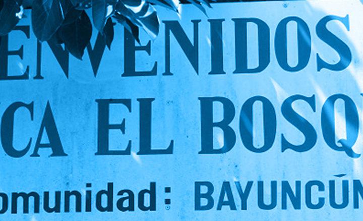 #133 Pirkanmaan Paahtimo: Nigaragua Finca El Bosque