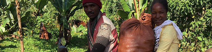 #134 Mokkamestarit: Ethiopia Addis Abeba 5/5