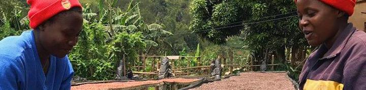 #134 Inka Paahtimo: Rwanda Muhondo