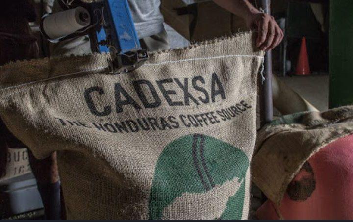 #137 Café Nazca: Opalaca
