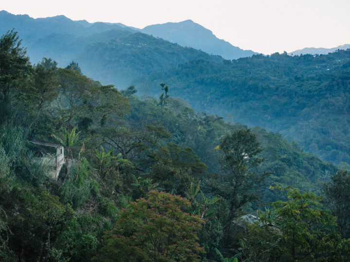 #162 Inka Paahtimo: Guatemala Wiwitz